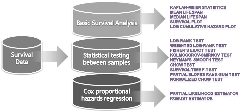 an introduction to the analysis of various meanings Descriptive statistical analysis helps you to understand your data and is a  the  mean is computed by the sum of all values, divided by the.